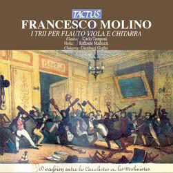 Download or print Francesco Molino Prelude In A Minor Sheet Music Printable PDF -page score for Classical / arranged Guitar SKU: 119054.