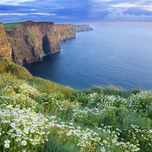 Irish Folksong, King Of The Fairies, Guitar Tab Play-Along, sheet music, piano notes, chords, song, artist, awards, billboard, mtv, vh1, tour, single, album, release