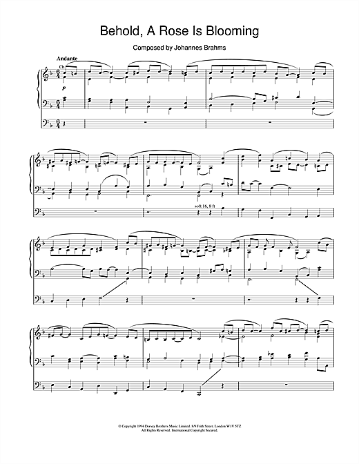 Johannes Brahms Behold, A Rose Is Blooming sheet music notes and chords. Download Printable PDF.