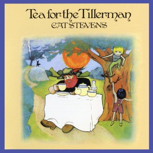Cat Stevens, Wild World, Flute, sheet music, piano notes, chords, song, artist, awards, billboard, mtv, vh1, tour, single, album, release