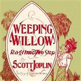 Download or print Scott Joplin Weeping Willow Rag Sheet Music Printable PDF -page score for Jazz / arranged Piano SKU: 65813.