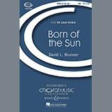 Download or print David Brunner Born Of The Sun Sheet Music Printable PDF -page score for Concert / arranged TBB SKU: 69708.
