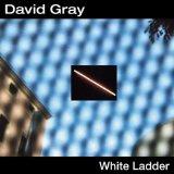 Download or print David Gray White Ladder Sheet Music Printable PDF -page score for Rock / arranged Guitar Tab SKU: 19123.