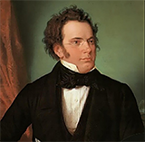 Download or print Franz Schubert Impromptu No. 1 In C Minor Sheet Music Printable PDF -page score for Classical / arranged Piano SKU: 69338.