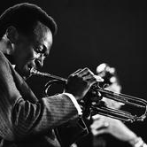 Download or print Miles Davis Billie's Bounce (Bill's Bounce) Sheet Music Printable PDF -page score for Jazz / arranged Trumpet Transcription SKU: 199054.