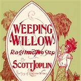 Download or print Scott Joplin Weeping Willow Rag Sheet Music Printable PDF -page score for Ragtime / arranged Guitar Tab SKU: 121091.