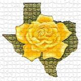 Download or print Traditional The Yellow Rose Of Texas Sheet Music Printable PDF -page score for Folk / arranged Banjo Lyrics & Chords SKU: 122929.
